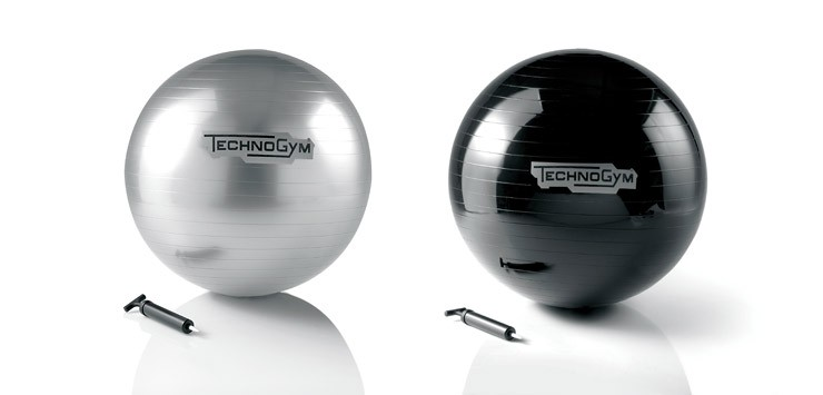 Technogym Wellness Ball (65cm)