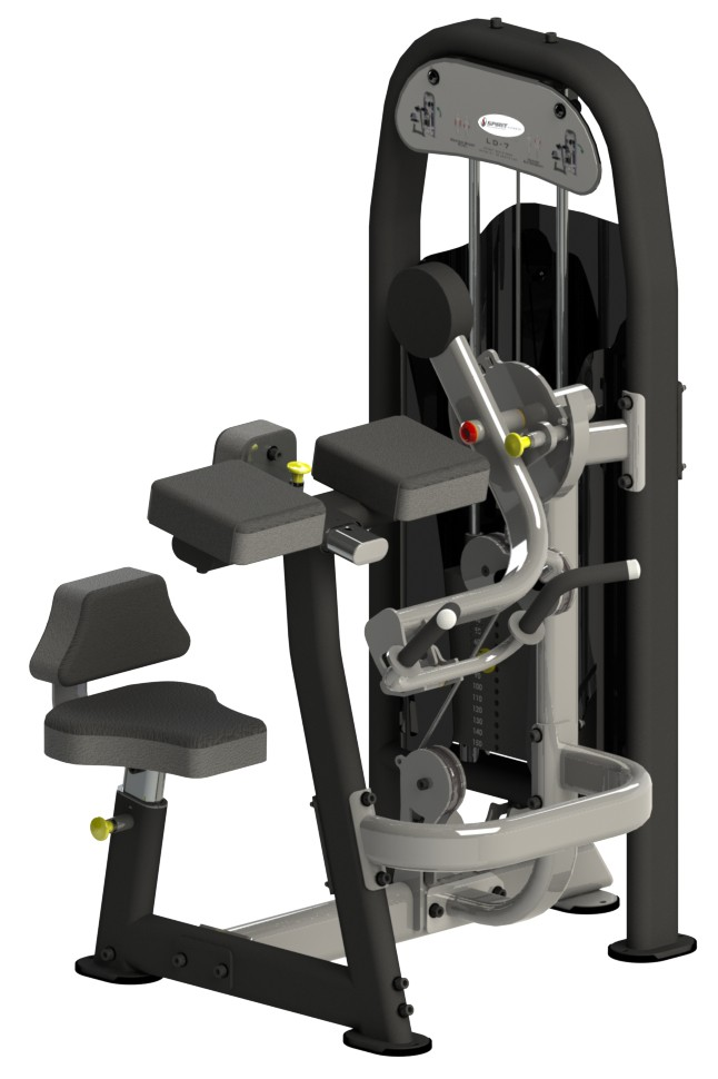 Spirit Fitness Seated Bicep Curl/Tricep Extension