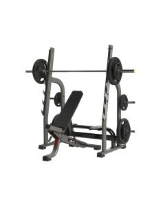 olympic multi adjustable bench