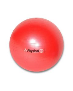 55cm Pro Stability Ball