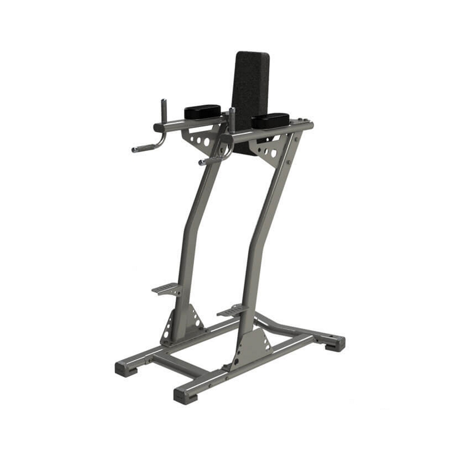 Exigo Leg Raise & Dip Station