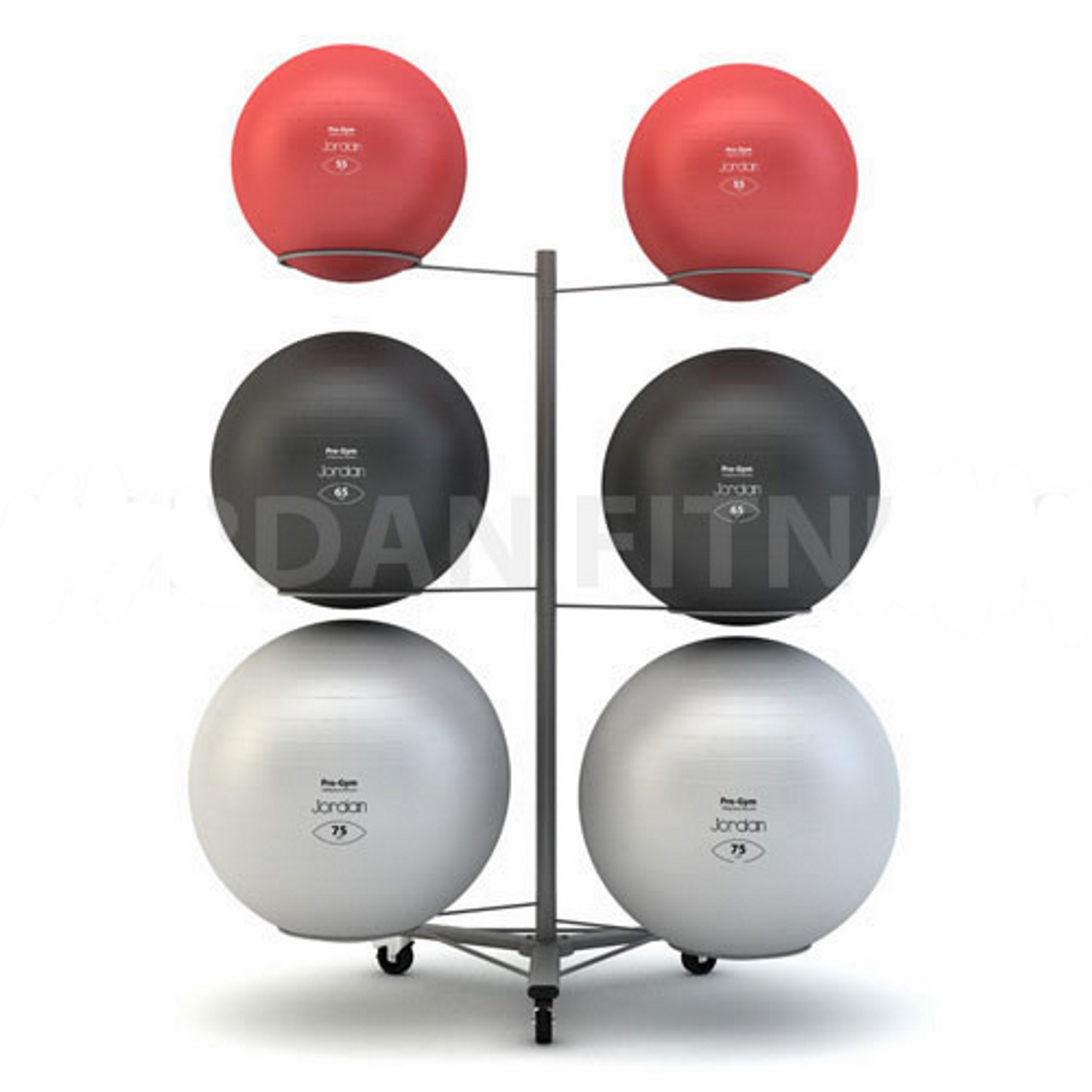 Fit Ball Rack - Holds 6 balls