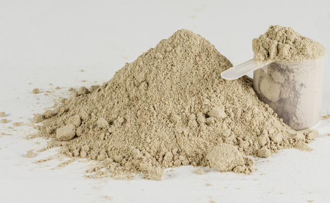 The Importance of Protein for Muscle Building